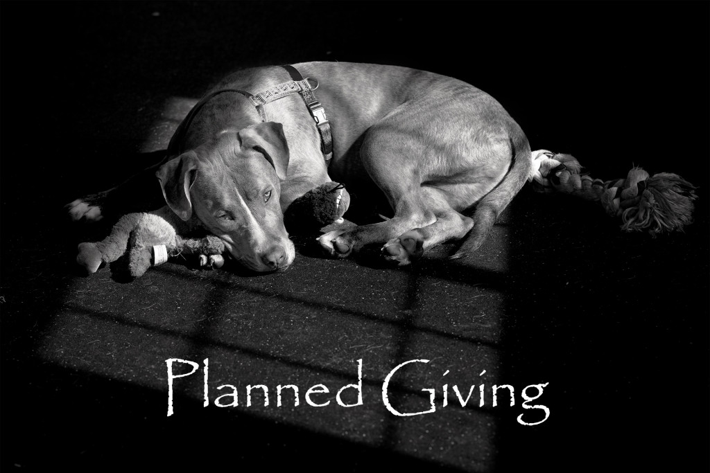 Planned giving2