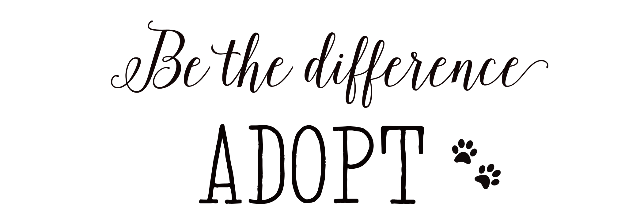 Adopt, don't shop and this is why…