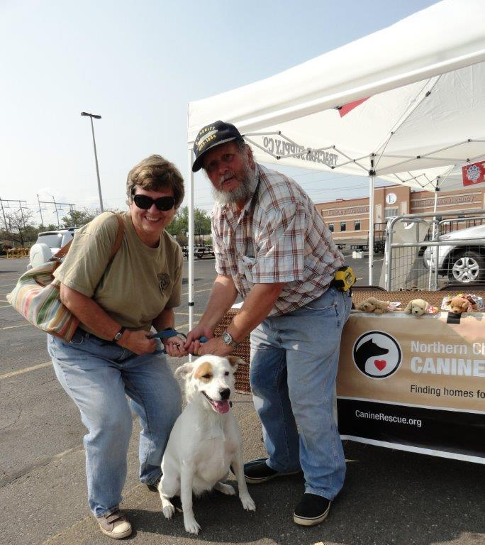 Westfield canine rescue