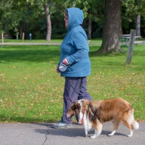 dog walk8