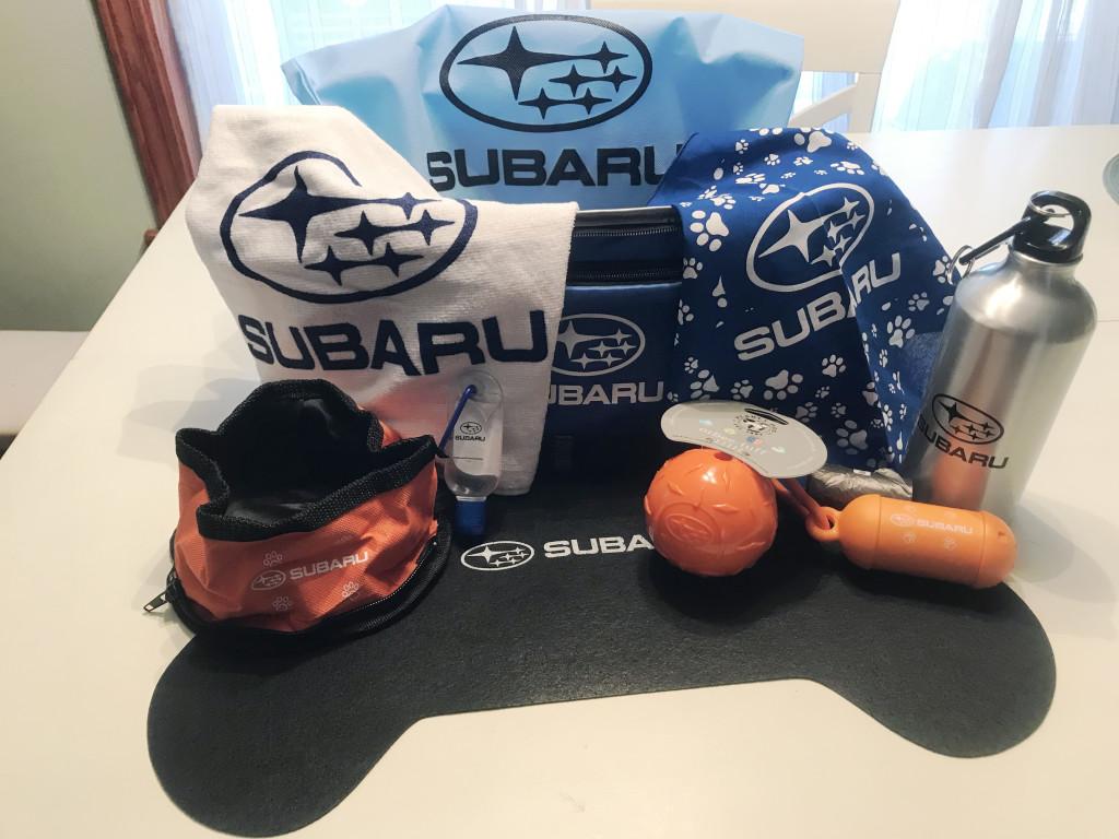 2019 Subaru Basket
