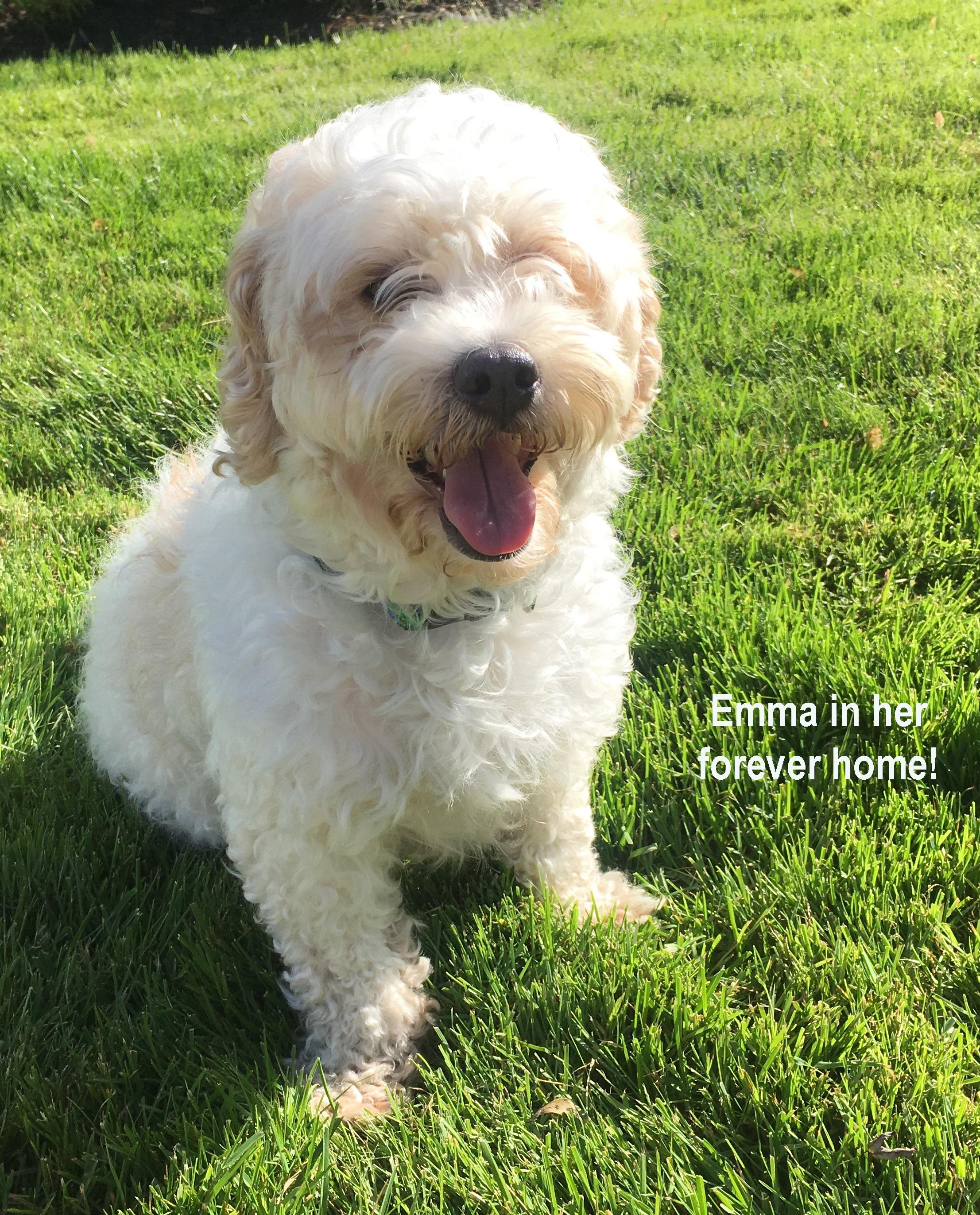 Adopted Emma