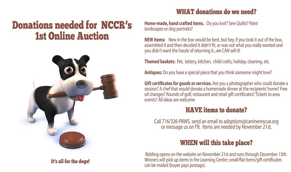 NCCR Annual       Auction