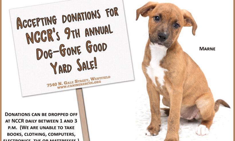 Donations Needed!